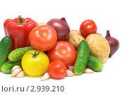 Купить «Свежие овощи», фото № 2939210, снято 13 октября 2011 г. (c) Ласточкин Евгений / Фотобанк Лори