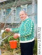 Купить «Побелка плодовых деревьев», эксклюзивное фото № 2939722, снято 6 ноября 2011 г. (c) Майя Крученкова / Фотобанк Лори