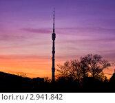 Купить «Москва, Останкинская телебашня на закате», фото № 2941842, снято 30 октября 2011 г. (c) ИВА Афонская / Фотобанк Лори