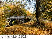 В осеннем парке. Стоковое фото, фотограф Терещенко Марина / Фотобанк Лори