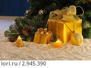 Купить «Подарки под елкой», фото № 2945390, снято 13 ноября 2010 г. (c) Литова Наталья / Фотобанк Лори