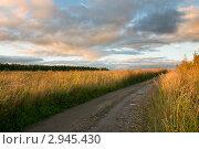 Купить «Дорога в поле», эксклюзивное фото № 2945430, снято 24 сентября 2011 г. (c) Александр Алексеев / Фотобанк Лори