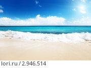 Купить «Песчаный пляж на Карибском море», фото № 2946514, снято 13 ноября 2009 г. (c) Iakov Kalinin / Фотобанк Лори