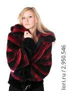 Купить «Блондинка в меховой куртке», фото № 2950546, снято 22 января 2010 г. (c) Сергей Сухоруков / Фотобанк Лори