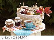 Купить «Варенье и джем в ассортименте в корзине на фоне сада», фото № 2954614, снято 21 сентября 2011 г. (c) Екатерина Штерн / Фотобанк Лори