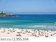 Пляж Бондай бич в Сиднее, Австралия, эксклюзивное фото № 2955934, снято 11 ноября 2011 г. (c) Аркадий Захаров / Фотобанк Лори
