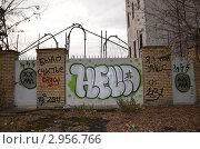 Граффити (2011 год). Редакционное фото, фотограф Галина Крючкова / Фотобанк Лори