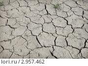 Купить «Почва потрескалась от жары», фото № 2957462, снято 24 сентября 2011 г. (c) Александр Романов / Фотобанк Лори