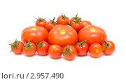 Купить «Спелые помидоры разных сортов на белом фоне», фото № 2957490, снято 15 ноября 2011 г. (c) Ласточкин Евгений / Фотобанк Лори