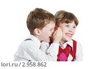 Купить «Мальчик шепчет на ухо девочке что-то смешное», фото № 2958862, снято 14 декабря 2017 г. (c) Дмитрий Калиновский / Фотобанк Лори