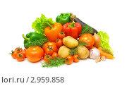 Купить «Композиция со свежими овощами на белом фоне», фото № 2959858, снято 18 ноября 2011 г. (c) Ласточкин Евгений / Фотобанк Лори