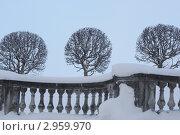 Ограда земляного вала сада Венеры в Петергофе зимой (2010 год). Редакционное фото, фотограф LightLada / Фотобанк Лори