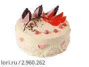 Купить «Торт», эксклюзивное фото № 2960262, снято 27 октября 2011 г. (c) Дмитрий Неумоин / Фотобанк Лори