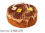 Купить «Медовый торт на белом фоне», эксклюзивное фото № 2960270, снято 27 октября 2011 г. (c) Дмитрий Неумоин / Фотобанк Лори