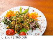 Купить «Кебаб в лаваше с овощами и спецями на тарелке», фото № 2960366, снято 30 августа 2011 г. (c) Elnur / Фотобанк Лори
