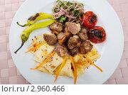 Купить «Мясной шашлык с овощами на тарелке», фото № 2960466, снято 30 августа 2011 г. (c) Elnur / Фотобанк Лори
