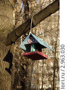 Кормушка для птиц (2011 год). Стоковое фото, фотограф Людмила Егорова / Фотобанк Лори