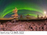 Купить «Ночи Севера», фото № 2965322, снято 17 сентября 2011 г. (c) Ахметсафин Руслан / Фотобанк Лори