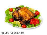Купить «Курица-гриль с овощами на тарелке», фото № 2966450, снято 20 августа 2011 г. (c) Elnur / Фотобанк Лори