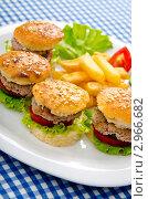 Купить «Тарелка с гамбургерами и картофелем фри на клетчатой салфетке», фото № 2966682, снято 3 сентября 2011 г. (c) Elnur / Фотобанк Лори