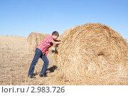 Мальчик толкает стог сена. Стоковое фото, фотограф Шарипова Лилия / Фотобанк Лори