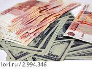 Деньги не пахнут. Стоковое фото, фотограф Королькова Татьяна Викторовна / Фотобанк Лори