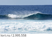 Купить «Красивый гребень океанской волны», фото № 2995558, снято 24 ноября 2011 г. (c) Татьяна Кахилл / Фотобанк Лори