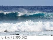 Купить «Красивый гребень океанской волны», фото № 2995562, снято 24 ноября 2011 г. (c) Татьяна Кахилл / Фотобанк Лори