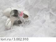 Купить «Свадебные украшения», фото № 3002910, снято 8 июля 2011 г. (c) Пересыпкина Елена Игоревна / Фотобанк Лори