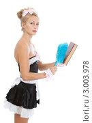 Купить «Горничная сметает пыль щеткой с книги», фото № 3003978, снято 28 августа 2011 г. (c) Сергей Дубров / Фотобанк Лори