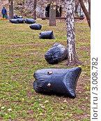 Купить «Уборка мусора в осеннем парке. Мешки с опавшими листьями», фото № 3008782, снято 7 ноября 2011 г. (c) Владимир Сергеев / Фотобанк Лори