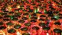 Горящие свечи в стеклянных лампах, видеоролик № 3010250, снято 5 декабря 2011 г. (c) Юрий Коновал / Фотобанк Лори