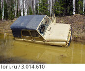Купить «УАЗ утонул в болоте», эксклюзивное фото № 3014610, снято 20 мая 2006 г. (c) Евгений Ткачёв / Фотобанк Лори