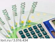 Купить «Купюры по сто евро и калькулятор», эксклюзивное фото № 3016434, снято 29 ноября 2011 г. (c) Игорь Низов / Фотобанк Лори