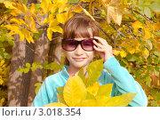 Золотая осень. Стоковое фото, фотограф Маргарита Волгина / Фотобанк Лори