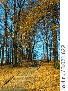 Купить «Золотая лестница», фото № 3021622, снято 6 ноября 2011 г. (c) Сергей Трофименко / Фотобанк Лори