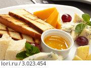 Сырная тарелка с виноградом и медом. Стоковое фото, фотограф Dzianis Miraniuk / Фотобанк Лори