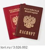 Купить «Российский и заграничный паспорт», эксклюзивное фото № 3026002, снято 29 ноября 2011 г. (c) Игорь Низов / Фотобанк Лори