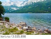 Купить «Пара уточек на озере Грундлзее, Австрия», фото № 3035898, снято 4 июня 2011 г. (c) Юрий Брыкайло / Фотобанк Лори
