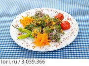Купить «Тонкий лаваш, фаршированный начинкой с овощным гарниром», фото № 3039366, снято 30 августа 2011 г. (c) Elnur / Фотобанк Лори