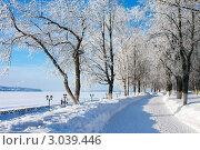 Зимний пейзаж, набережная Костромы. Стоковое фото, фотограф ElenArt / Фотобанк Лори