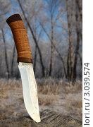 Нож охотника. Стоковое фото, фотограф Ворошилова Анна / Фотобанк Лори