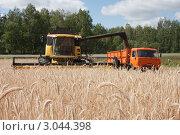 Купить «Уборка урожая зерновых культур», фото № 3044398, снято 3 августа 2011 г. (c) Михаил Рыбачек / Фотобанк Лори