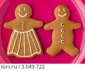 Купить «Имбирное печенье в форме человечков», фото № 3049722, снято 2 ноября 2007 г. (c) Monkey Business Images / Фотобанк Лори
