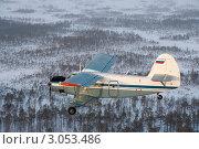 Купить «Ан-2 над лесом зимой», фото № 3053486, снято 6 января 2009 г. (c) Владимир Мельников / Фотобанк Лори