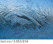 Купить «Художница-зима - морозные узоры на стекле», фото № 3053814, снято 25 ноября 2011 г. (c) Светлана Ильева (Иванова) / Фотобанк Лори