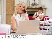 Купить «Молодая женщина работает за ноутбуком, пока няня сидит с ребенком», фото № 3054774, снято 18 марта 2000 г. (c) Monkey Business Images / Фотобанк Лори
