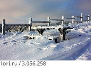 Вечерняя зимняя зарисовка. Стоковое фото, фотограф Игорь Белов / Фотобанк Лори