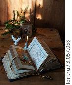 Купить «Рождественское утро», эксклюзивное фото № 3057058, снято 13 декабря 2011 г. (c) Короленко Елена / Фотобанк Лори
