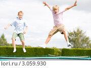 Купить «Мальчики веселятся и прыгают на батуте на свежем воздухе», фото № 3059930, снято 6 мая 2000 г. (c) Monkey Business Images / Фотобанк Лори